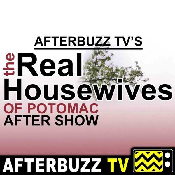 Real Housewives of Potomac Reviews and After Show - AfterBuzz TV