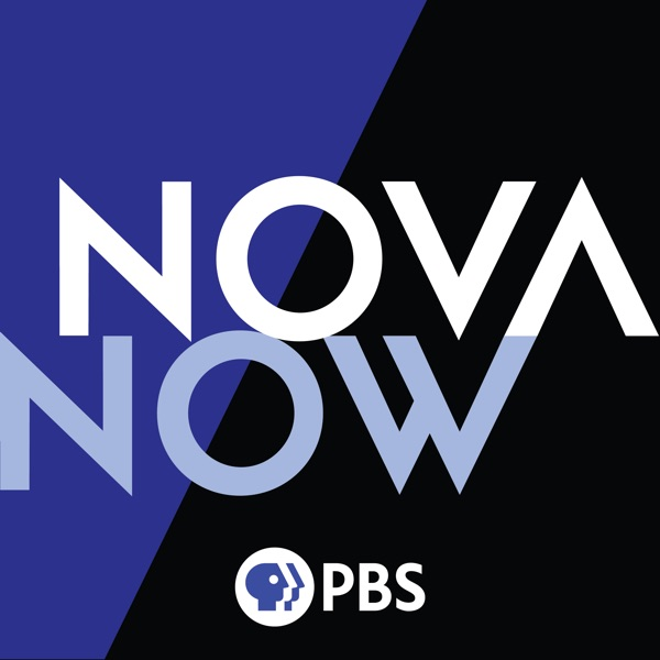 NOVA Now