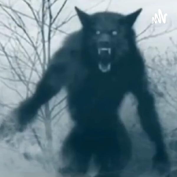 In The Dark (Bigfoot, Dogmen, Aliens, All Things Supernatural)