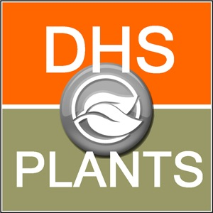 DHS Plants Guided Tour