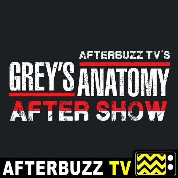 Grey's Anatomy Reviews and After Show