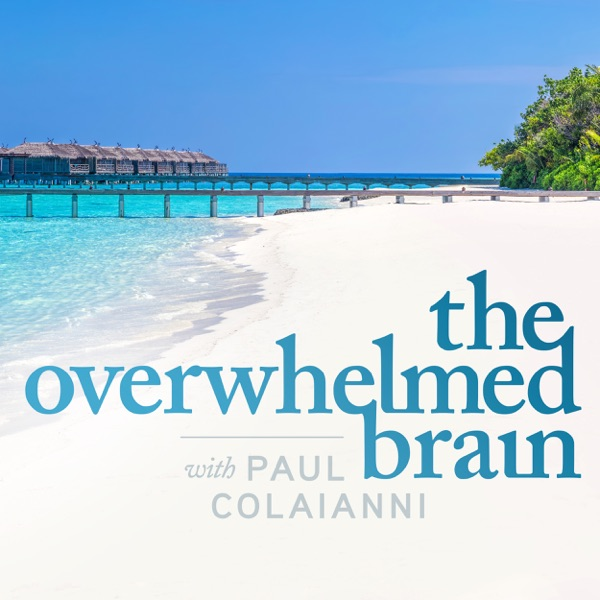 The Overwhelmed Brain - Stop stress, anxiety, and depression, while honoring yourself with family and relationships